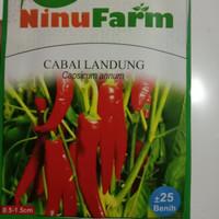 benih cabai besar ladung Ninufarm