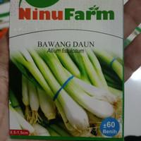 benih daun bawang ninufarm