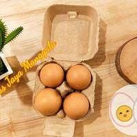 paper egg 4 lubang/tray kertas/ box kertas