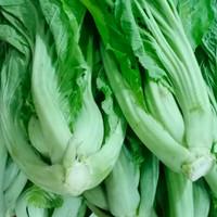 Sawi Pahit Segar / Sayur Pait segar - 1 kg