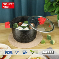 Cooker King Stardust Stock Pot With Lid 22 Cm