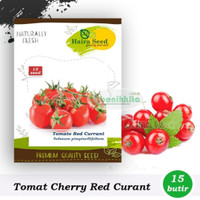 Benih-bibit tomat Cherry Red currant