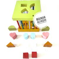 Mainan Edukasi Anak Shorting Box Bentuk Geometri dan Warna