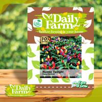 Benih cabe rawit pelangi rainbow pepper cabai warna warni daily farm