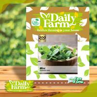 DF benih rempah daun MINT common mint 200 butir dari daily farm