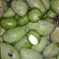 buah mangga muda 1kg - kecil