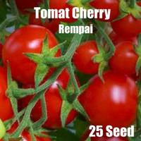 Benih Bibit Tomat Cherry Rempai kemasan Alumunium