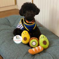 Superfood Squeaky Toy - Mainan Bunyi Anjing Hewan Pet Dog