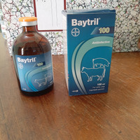 Baytril 100 (enrofloxacine) - 100 ml Bayer