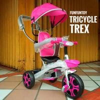 Sepeda anak roda tiga trex 3-3 |tudung|pengaman|musik|dorongan|diputar
