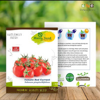 isi 15 Benih Tomat Red Currant Haira Seed Kemasan Original Pabrik
