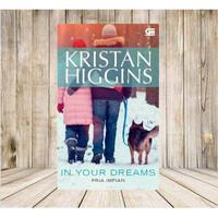 Novel Kristan Higgins In Your Dreams Pria Impian Baru dan segel