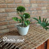 Set Alium hijau/ mini alium / bunga meja/ bunga plastik