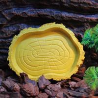 Tempat Makan Minum Tortoise Reptil Kura kura Mewah Import Nomoypet