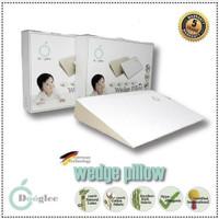 Dooglee Wedge Pillow | Bantal Bayi | Latex | Bantal Anak