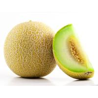 SayurHD buah segar manis MELON MADU 1 buah (1,800 gram - 2,200 gram)