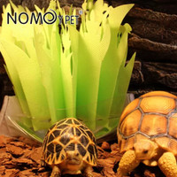Humidifier Natural Hewan Reptil Magic Import Nomoypet