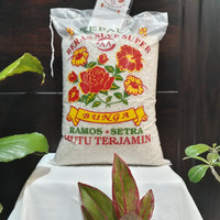beras kembang setra ramos 5 kg
