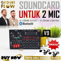 Sound Card Soundcard Recording 2 Mic Dual Channel Mixer Podcast - V9