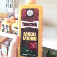Madu Trigona 100% Asli   Madu Lanceng 1kg   Trigona raw Honey