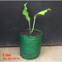 Planter Bag 5 Liter