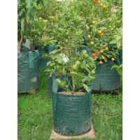 Planter Bag 30 Liter - 2 Handle