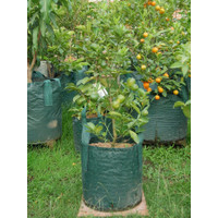 Planter Bag 18 Liter - 2 Handle
