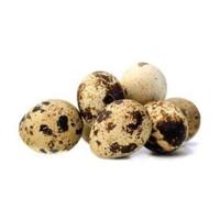 SayurHD telur puyuh mentah segar per 10 butir