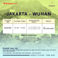 CHARTER FLIGHT WUHAN,CHINA TO AND FROM (ONLY FOR CHINESE PASSPORT)