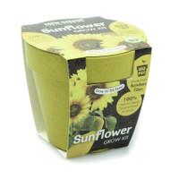 paris garden bibit bunga matahari bio pot kebun taman tanaman rumah