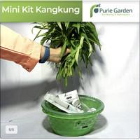 Hidroponik Mini Kit Kangkung Purie Garden