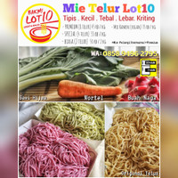 Mie Telur (Mentah) Premium HOMEMADE Lot10 - Mie Buah Naga, Premium
