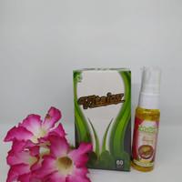 kapsul daun kelor Free Eucalyptus anti virus (PROMO HEMAT)