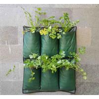 Wall Planter 6 Kantong