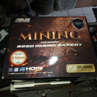 ASUS MINING 19 SLOT B250 MINING EXPERT