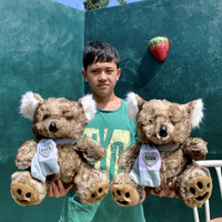 boneka koala lucu berkualitas SNI