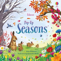 Usborne Pop Up Seasons. Buku Anak Import