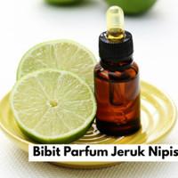 Bibit Parfum Jeruk Nipis / Fragfrance Lime 500ml