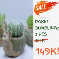 Bundling Palmar artificial pot keramik dapet 3 succulent