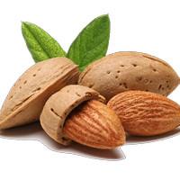 kacang almond 1 kg california almond roasted