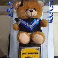 piala trophy wisuda boneka beruang - Cokelat