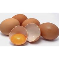 SayurHD telur telor negeri segar 500 gram