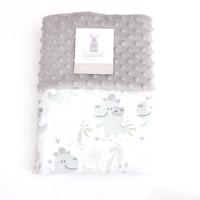Carrol baby blanket Dinosaur baby with camera - Minky cream - grey - grey