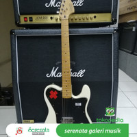 Squier Deryck Whibley Telecaster, Made In Indonesia