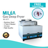 Penggorengan Kentang / Deep Fryer Gas 12Liter BG-877
