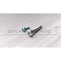 Sekrup SDS PH Drilling 10x30 - Self Drilling Pan Head obeng 100pcs