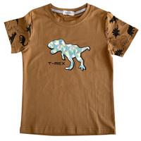 T-Rex Printed Boy Tee - MOEJOE / Kaos anak Laki-laki