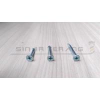 Sekrup SDS FH Drilling #8x25 - Self Drilling Plat Haed Obeng 100pcs