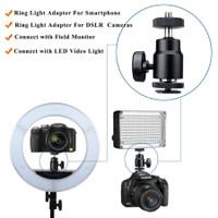 Ballhead mini with hotshoe holder for Kamera Mirrorless smartphone H11