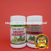 Obat Herbal Mengobati Infeksi atau Abses Ginjal Secara Aman